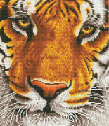 Diamond Dotz Tiger 36x42 cm